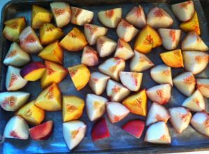 Peaches for freezing final