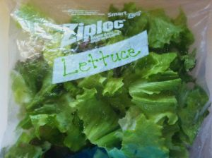 Red Leaf Lettuce Cleaned and Bagged