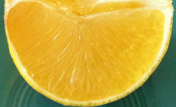Meyer lemon wedge