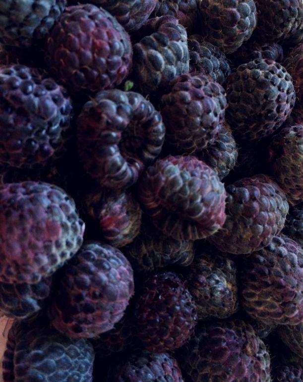 Luscious Fresh Berries